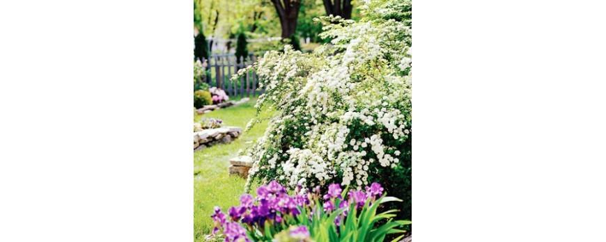 jardines con encanto por poco dinero